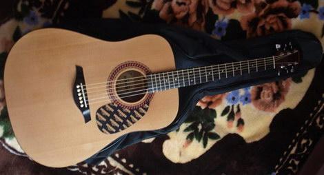 Hohner HW220 отзывы о гитаре